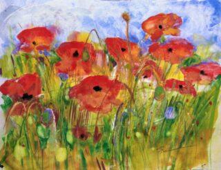 mixed media painting of poppies by Elizabeth Vercoe
