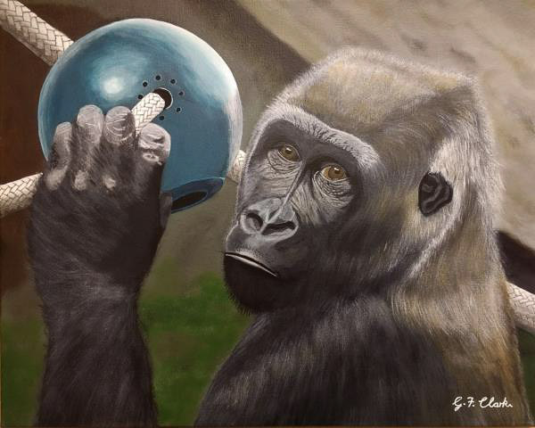Acrylic painting of a gorilla looking at the viewer