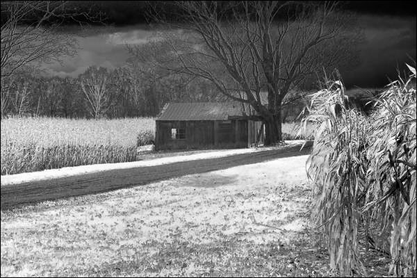Black and White Photograph of an old dwelling in landscape