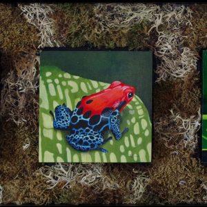 "THE SOPRANOS by Bob ""Omar"" Tunnoch, Mixed Media, poison arrow frog, red eyed frog, harlequin frog, 29"" x 12"", $500"