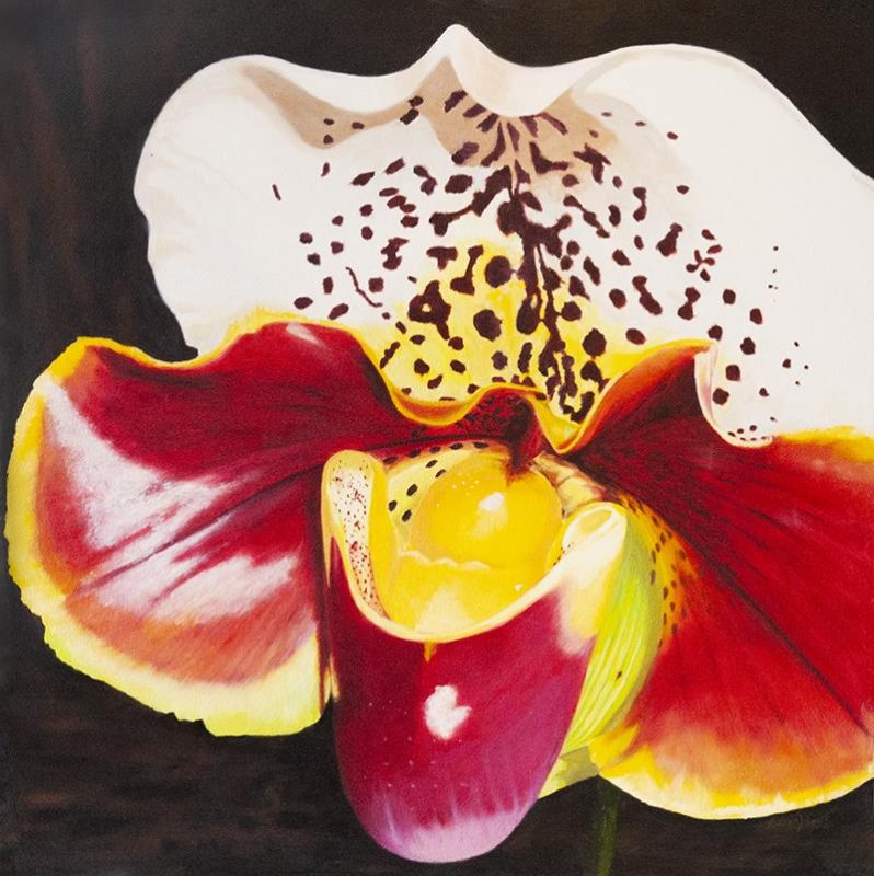 Original Oil Painting of a beautiful and colourful orchid bloom