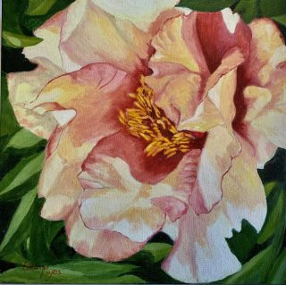 "PEACH PEONY by Eileen Myers, Acrylic on gallery canvas, 12"" x 12"", $155"