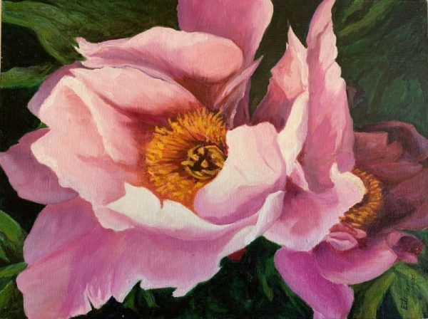 PINK PEONY by Eileen MYERS