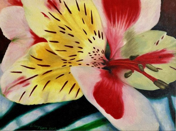 """TIGER LILY by Eileen MYERS, Oil, Gallery Canvas, 24"""" X 18"""", $449"""